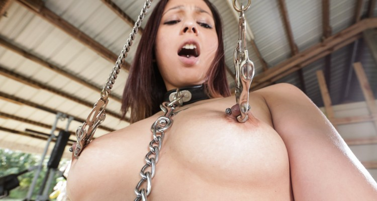 Jaye Summer's nipples in clamps